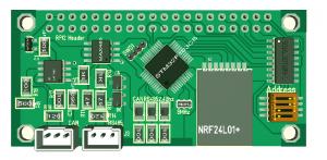 RPI Zero Com NRF